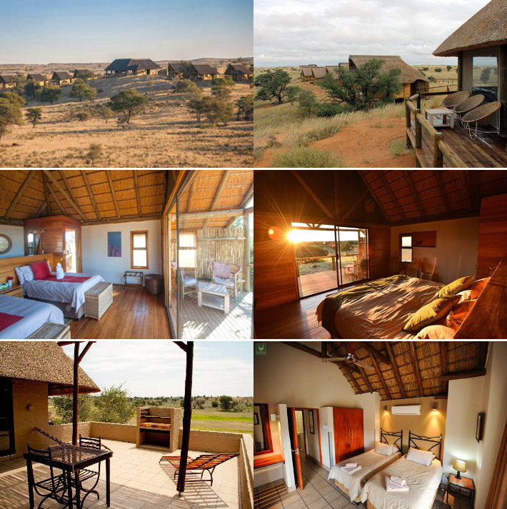 Rooms and chalets for the Wildlife Photo Tour in the Kalahari park