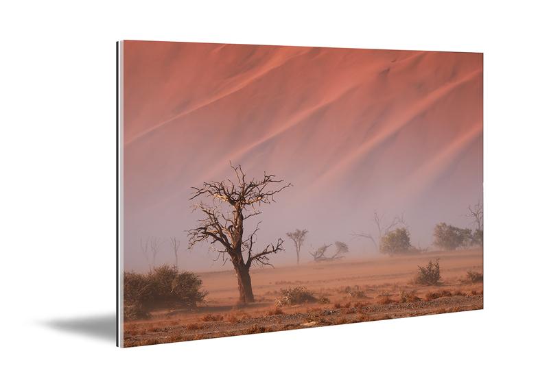 Acrylic glass art print displaying a landscape desert photographic print