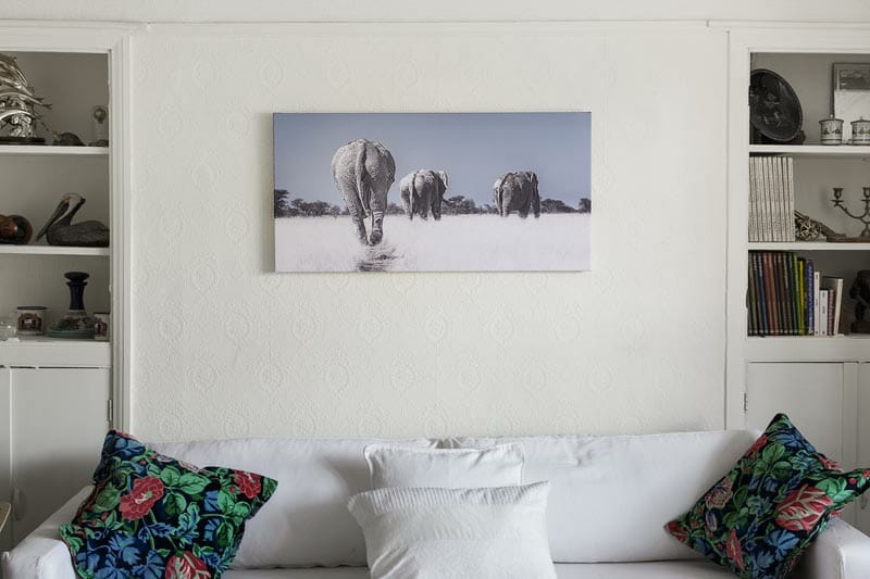 African elephant canvas art photo print hanging on wall above the sofa