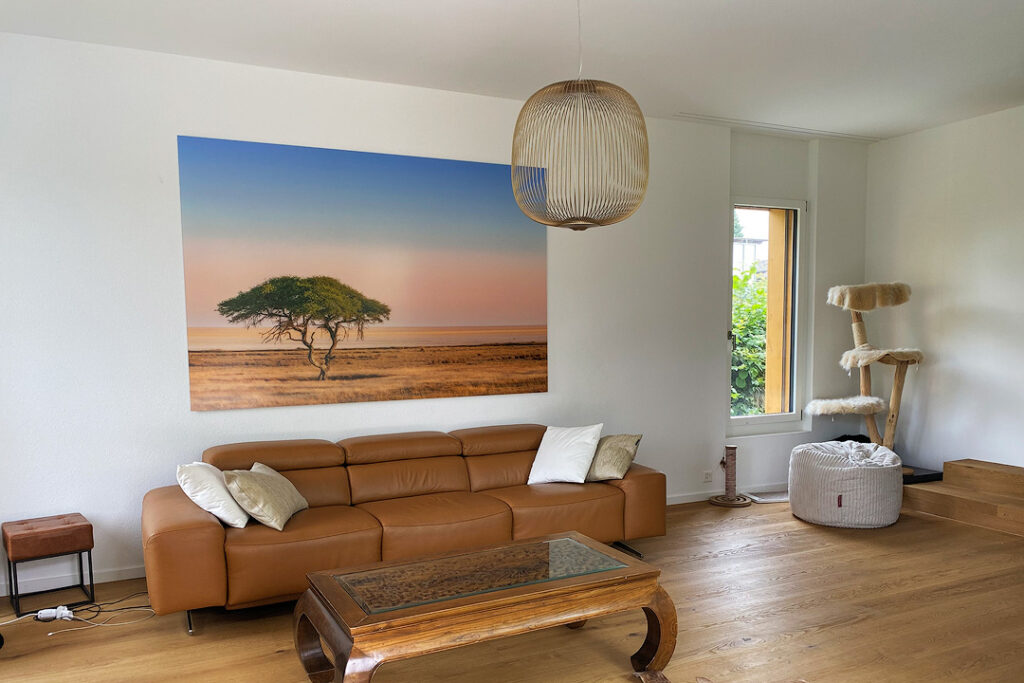 African landscape picture print behind Acrylic glass hanging in a home.
