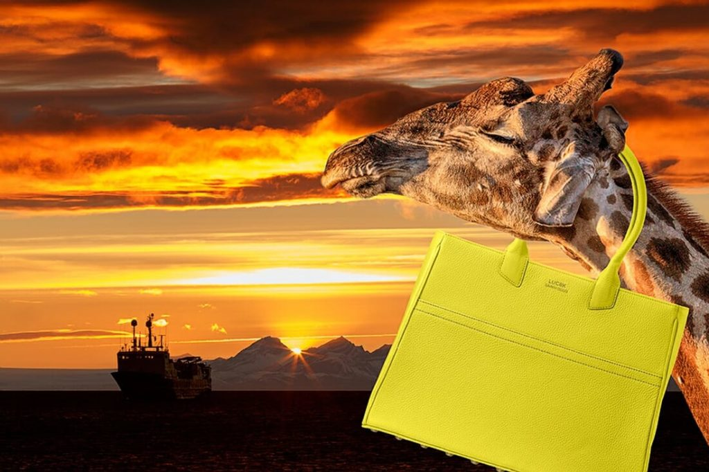 Giraffe with yellow leather tote bag. Sunset and boat in Svalbard. Luc8k customized leather bags.