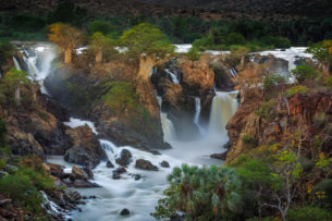 A fine art landscape photograph in color features the Epupa Waterfalls and Baobab trees. (copyright Anette Mossbacher)