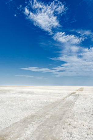 The desert landscape photograph shows the massive Makgadikgadi Salt Pan with vehicle tracks. (copyright Anette Mossbacher)