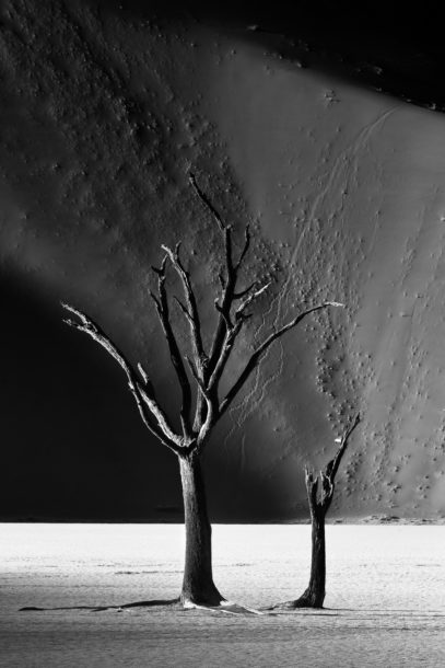 A fine art landscape photograph in black and white shows two dead trees on the landscape of the Deadvlei clay pan. (copyright Anette Mossbacher)